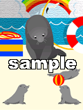 Sealion_sample